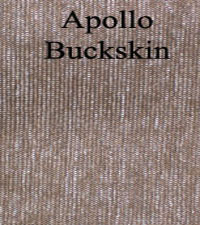 Apollo Buckskin