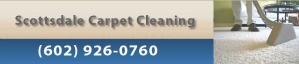 Cleaning Scottsdale